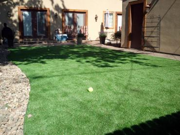 Artificial Grass Photos: Artificial Turf Davenport, Oklahoma Backyard Playground, Backyard Landscape Ideas