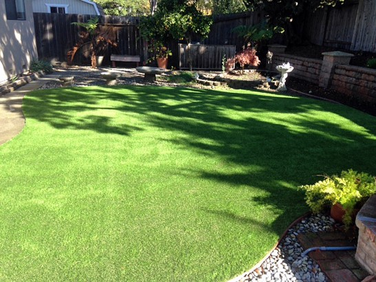 Artificial Grass Photos: Artificial Turf Installation Del City, Oklahoma Cat Playground, Backyard Garden Ideas