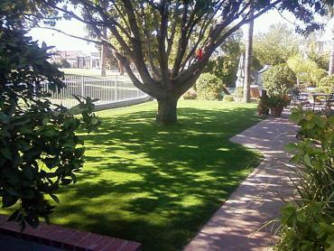 Best Artificial Grass Fort Cobb, Oklahoma Paver Patio artificial grass