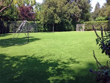 Artificial Grass Photos: Fake Turf Justice, Oklahoma Sports Athority, Backyard Landscaping