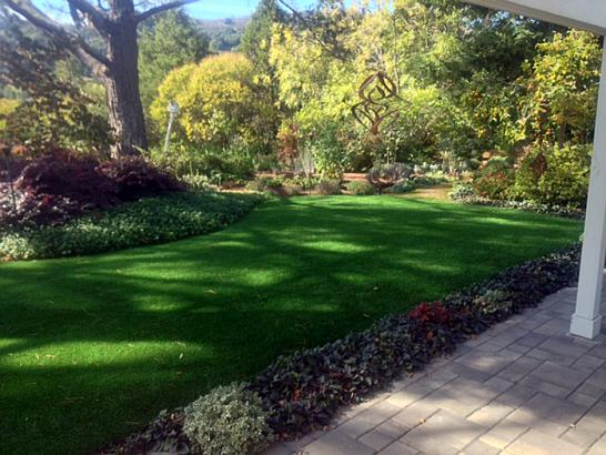 Artificial Grass Photos: Faux Grass Hunter, Oklahoma Home And Garden, Backyards