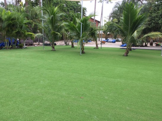 Artificial Grass Photos: Grass Turf Nowata, Oklahoma Design Ideas, Commercial Landscape