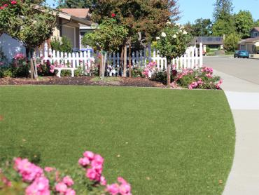 Installing Artificial Grass Avant, Oklahoma Backyard Playground, Front Yard Ideas artificial grass