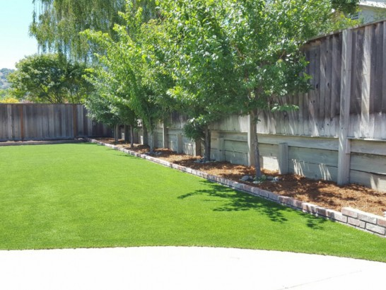 Lawn Services Atoka, Oklahoma City Landscape, Backyard Landscaping Ideas artificial grass