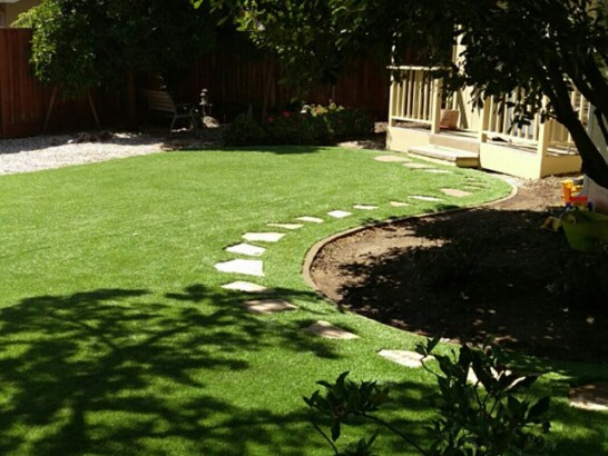 Plastic Grass Roland, Oklahoma Design Ideas, Backyard Garden Ideas artificial grass